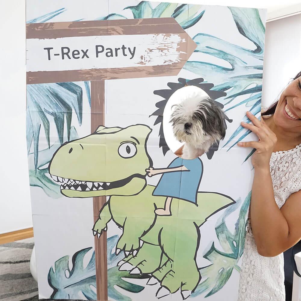 mini-presents Fotowand Dino Party Deko